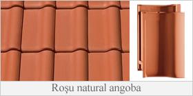 CREATON - Rosu natural angoba